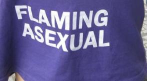tCSD 2013 shirt2